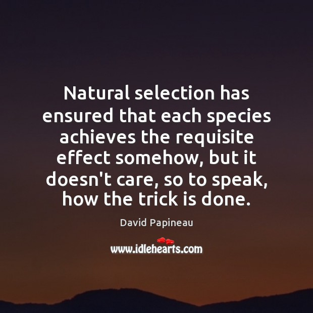 Natural selection has ensured that each species achieves the requisite effect somehow, Image