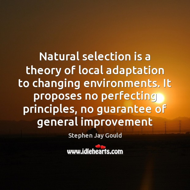 Image, Natural selection is a theory of local adaptation to changing environments. It