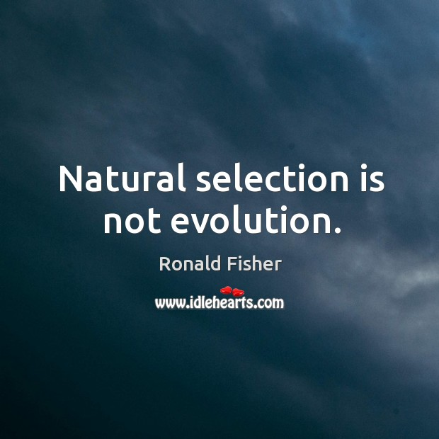 Natural selection is not evolution. Ronald Fisher Picture Quote