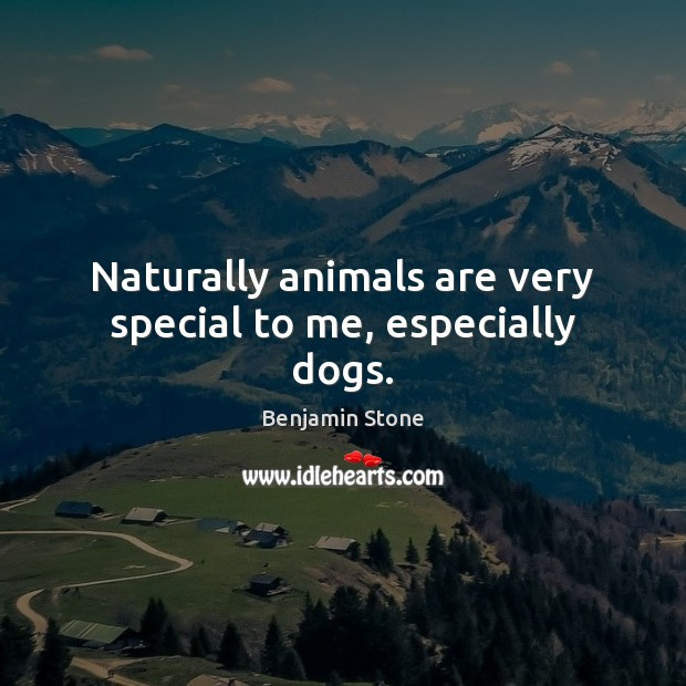 Naturally animals are very special to me, especially dogs. Image