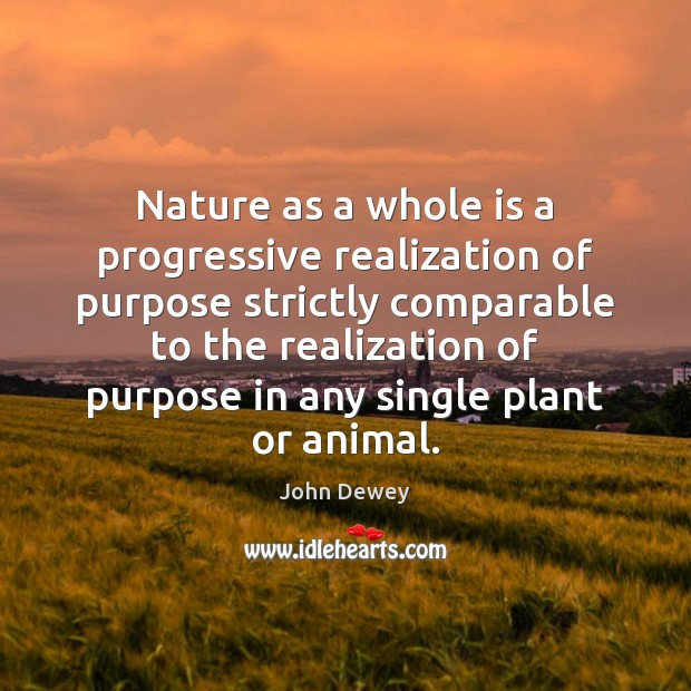 Image, Nature as a whole is a progressive realization of purpose strictly comparable