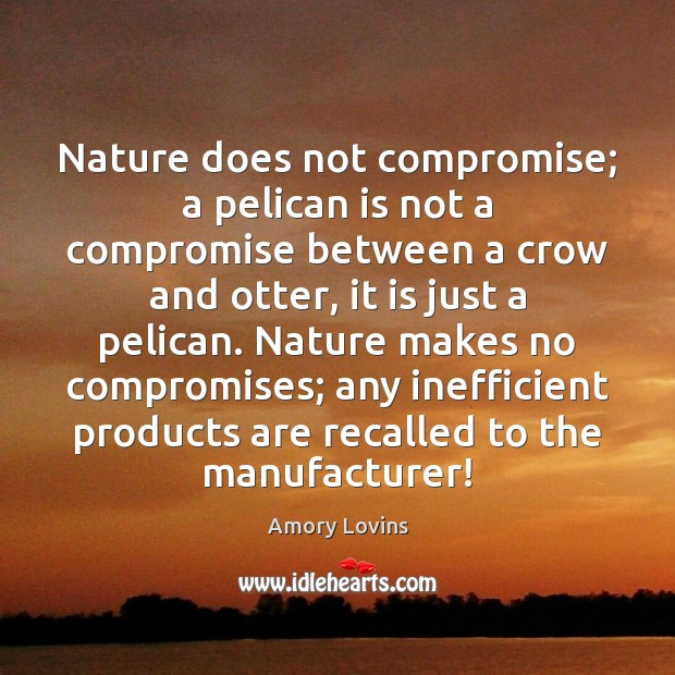 Image, Nature does not compromise; a pelican is not a compromise between a