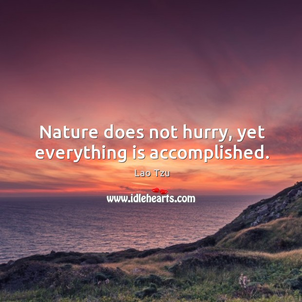 Nature does not hurry, yet everything is accomplished. Image