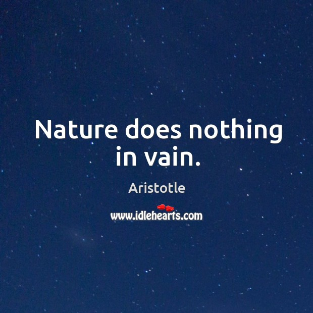 Image, Nature does nothing in vain.