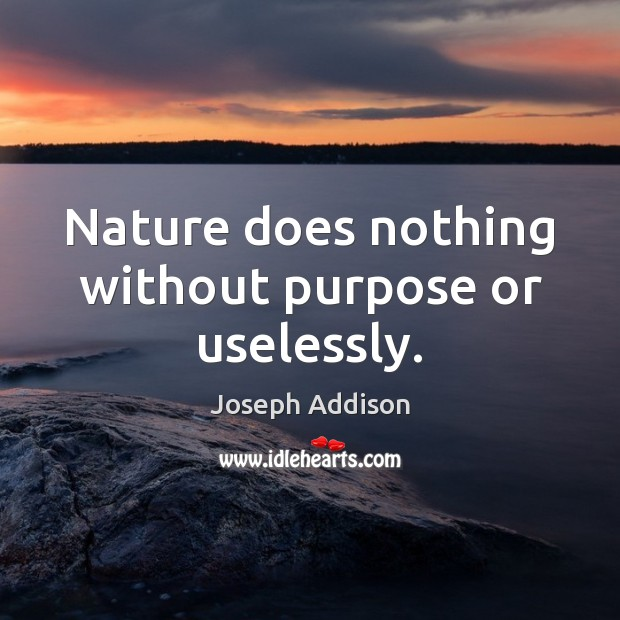 Nature does nothing without purpose or uselessly. Image