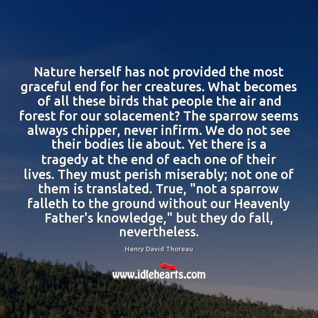 Nature herself has not provided the most graceful end for her creatures. Image