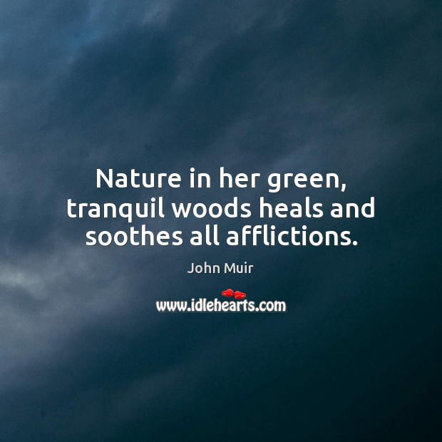 Nature in her green, tranquil woods heals and soothes all afflictions. Image