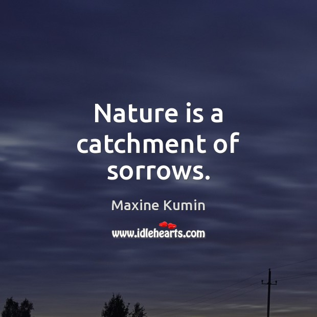 Image, Nature is a catchment of sorrows.