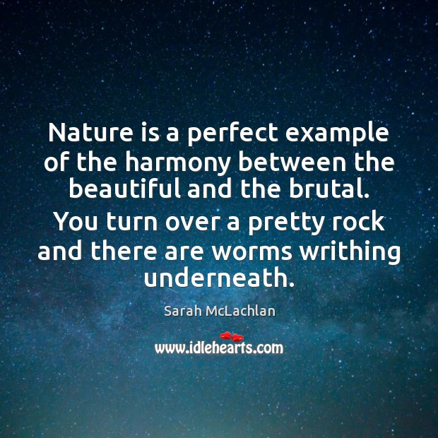 Nature is a perfect example of the harmony between the beautiful and Image