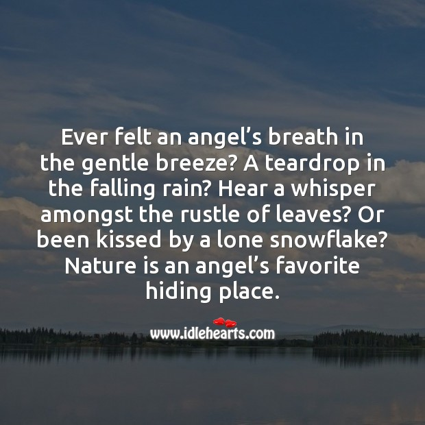 Nature is an angel's favorite hiding place. Image