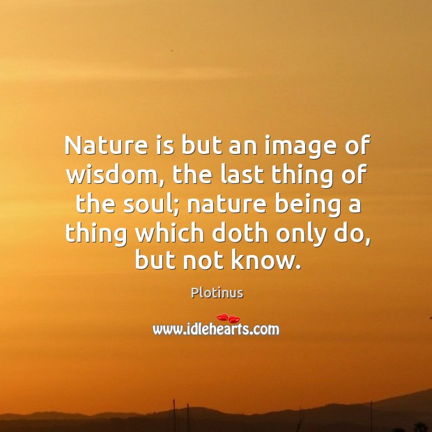 Nature is but an image of wisdom, the last thing of the Image