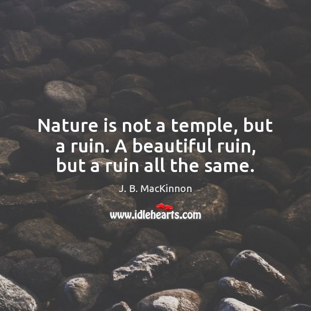 Nature is not a temple, but a ruin. A beautiful ruin, but a ruin all the same. Image