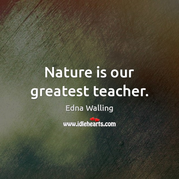 Nature is our greatest teacher. Image