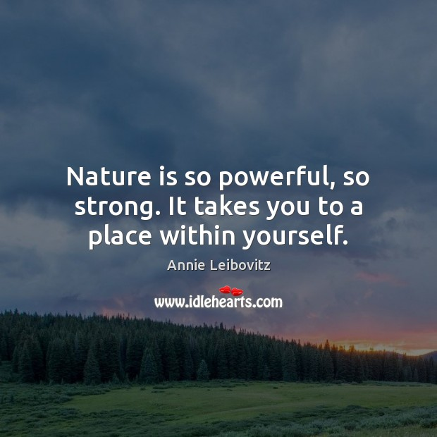 Nature is so powerful, so strong. It takes you to a place within yourself. Annie Leibovitz Picture Quote