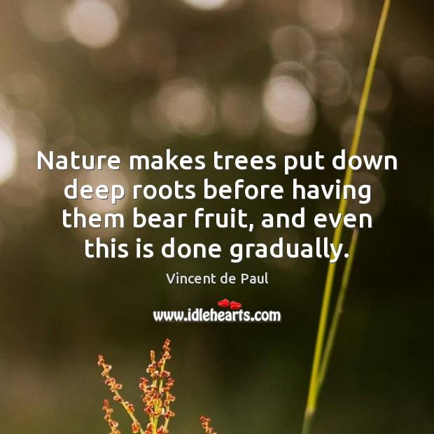 Nature makes trees put down deep roots before having them bear fruit, Vincent de Paul Picture Quote