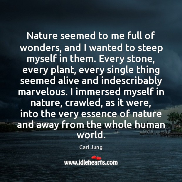 Nature seemed to me full of wonders, and I wanted to steep Image