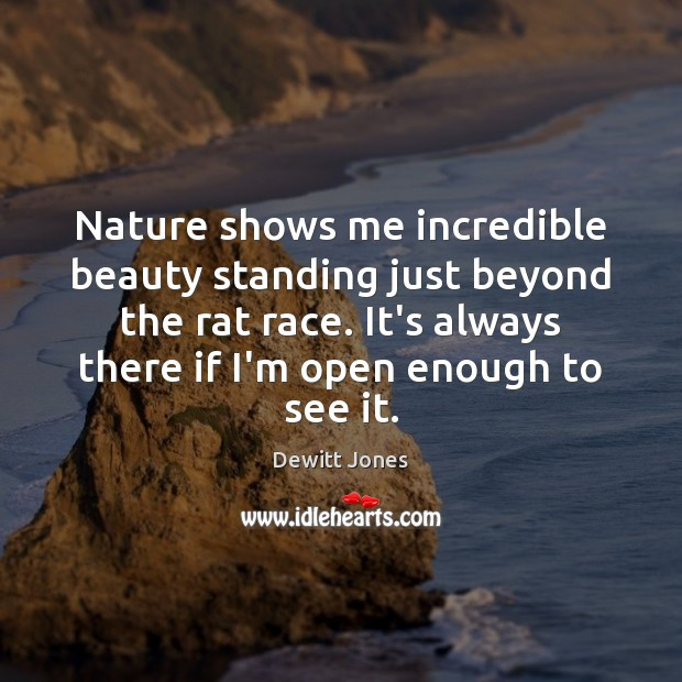 Nature shows me incredible beauty standing just beyond the rat race. It's Dewitt Jones Picture Quote