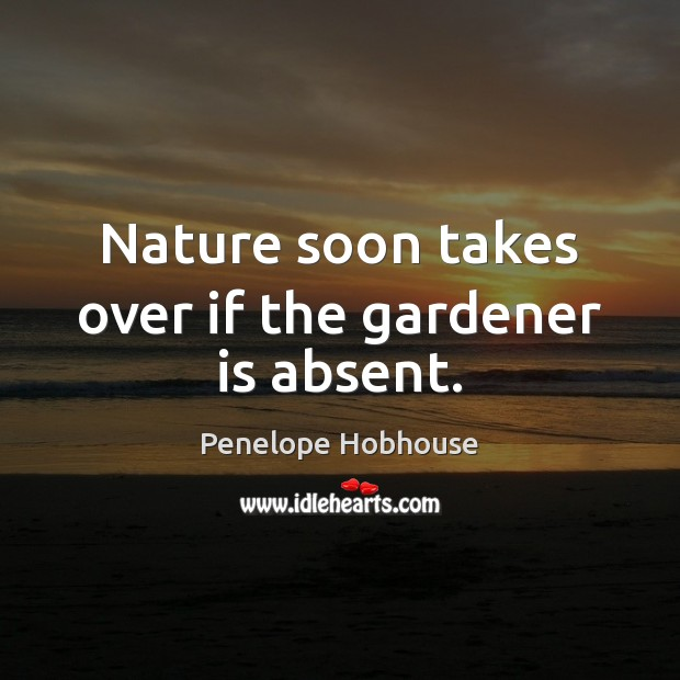 Nature soon takes over if the gardener is absent. Image