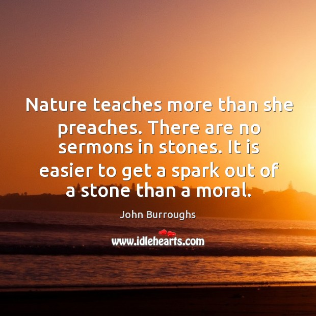 Nature teaches more than she preaches. There are no sermons in stones. Image
