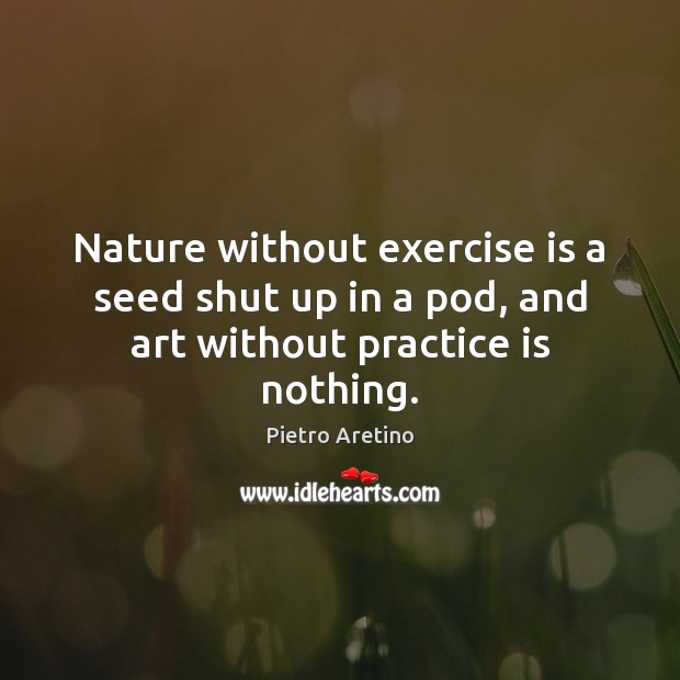 Nature without exercise is a seed shut up in a pod, and art without practice is nothing. Image