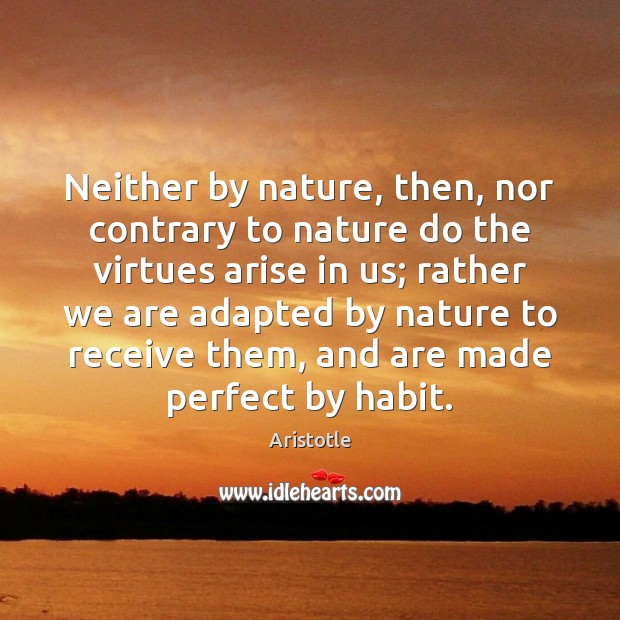 Image, Neither by nature, then, nor contrary to nature do the virtues arise