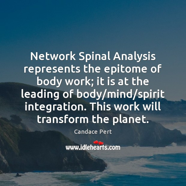 Image, Network Spinal Analysis represents the epitome of body work; it is at
