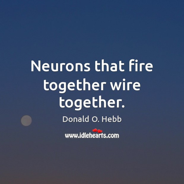 Image, Neurons that fire together wire together.