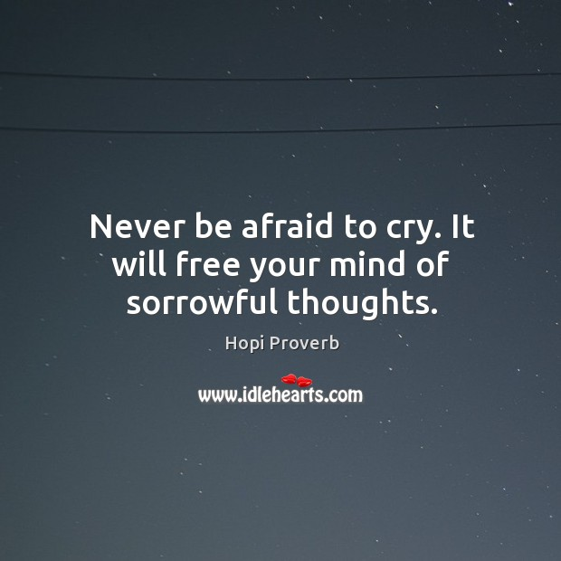 Never be afraid to cry. It will free your mind of sorrowful thoughts. Hopi Proverbs Image