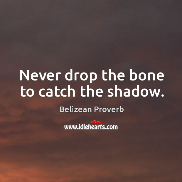 Never drop the bone to catch the shadow. Belizean Proverbs Image