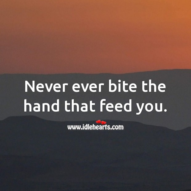 Image, Never ever bite the hand that feed you.