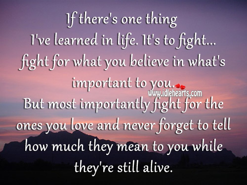 Quotes About Fighting For The One You Love Download Inspiring Home Adorable Quotes About Fighting For The One You Love