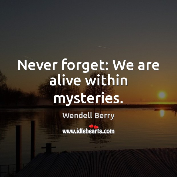 Never forget: We are alive within mysteries. Image