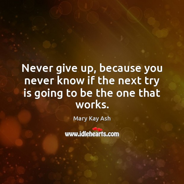 Never give up, because you never know if the next try is going to be the one that works. Never Give Up Quotes Image