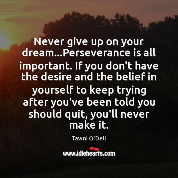Never give up on your dream…Perseverance is all important. If you Perseverance Quotes Image