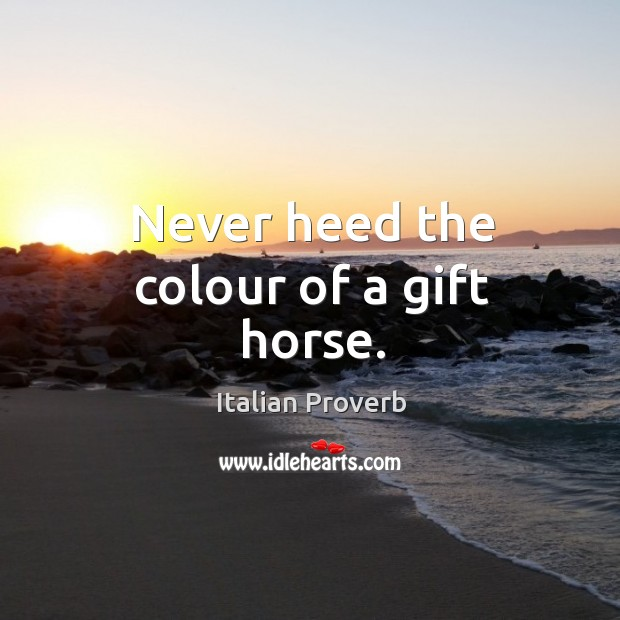 Image, Never heed the colour of a gift horse.