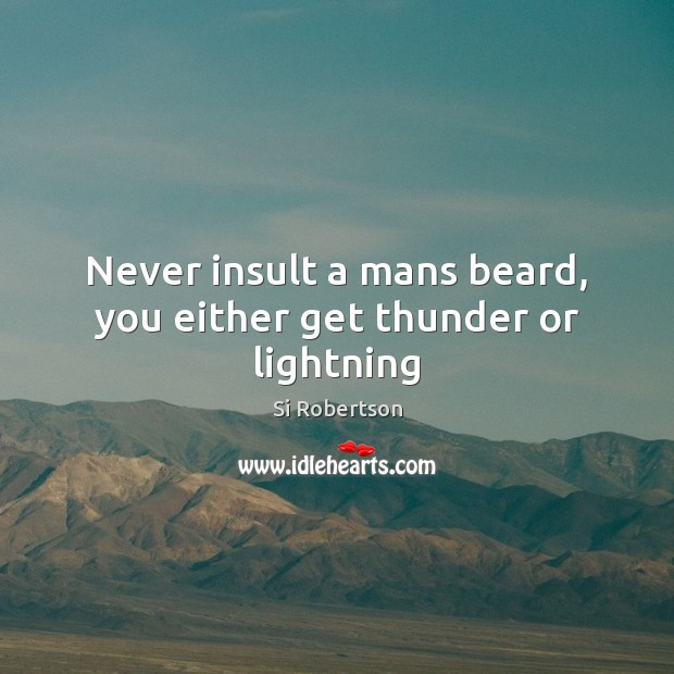 Never insult a mans beard, you either get thunder or lightning Insult Quotes Image