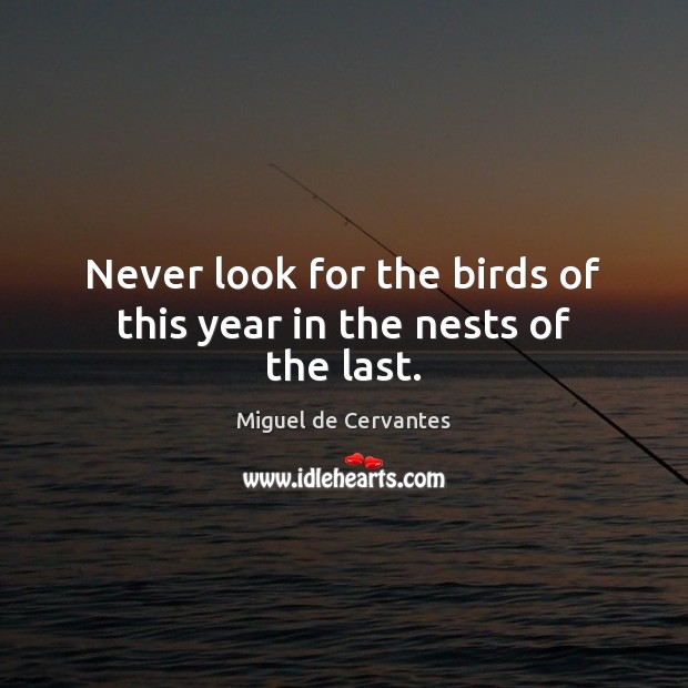 Never look for the birds of this year in the nests of the last. Miguel de Cervantes Picture Quote