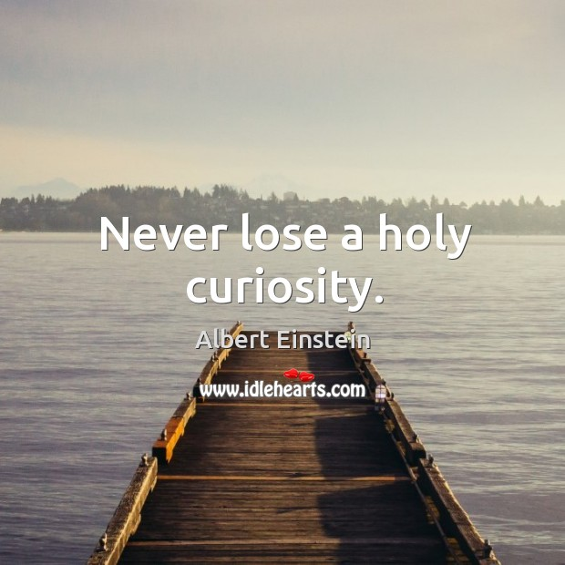 Image, Never lose a holy curiosity.