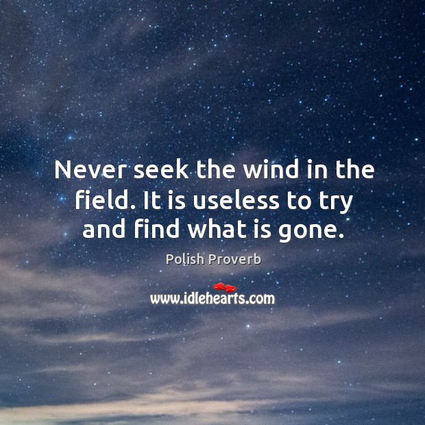 Never seek the wind in the field. It is useless to try and find what is gone. Polish Proverbs Image