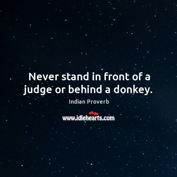 Never stand in front of a judge or behind a donkey. Image