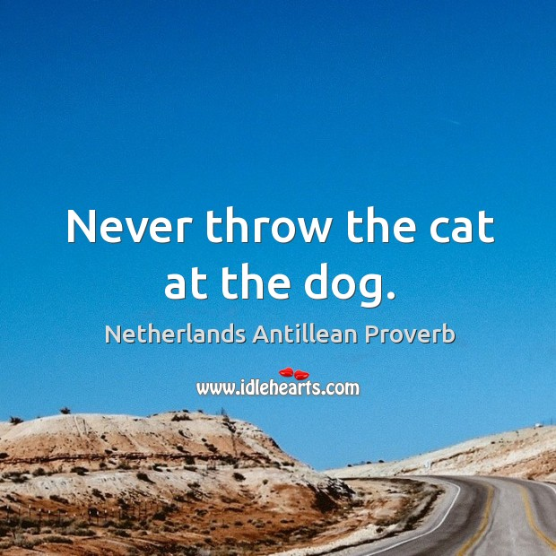 Image, Never throw the cat at the dog.