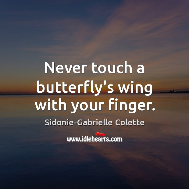 Never touch a butterfly's wing with your finger. Sidonie-Gabrielle Colette Picture Quote