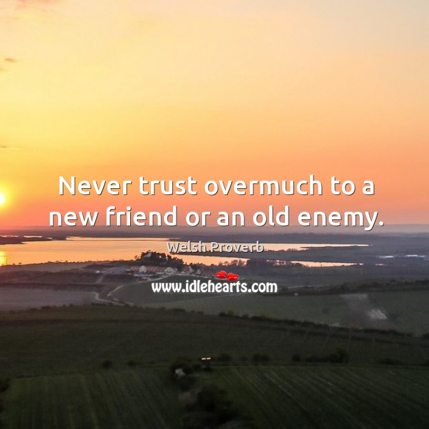 Never trust overmuch to a new friend or an old enemy. Welsh Proverbs Image