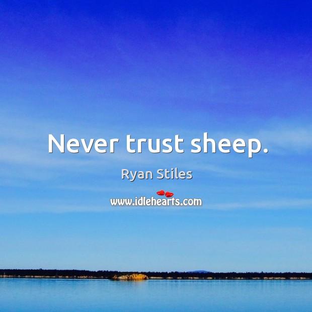 Image, Never trust sheep.