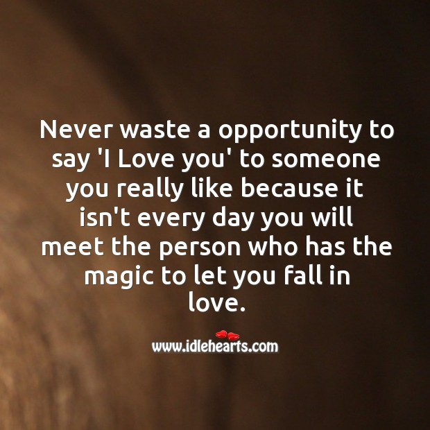 """Never waste a opportunity to say """"I love you"""" Opportunity Quotes Image"""