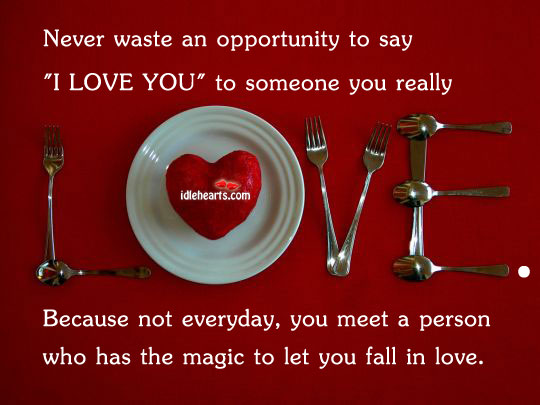"""Never waste an opportunity to say """"I love you"""" Opportunity Quotes Image"""