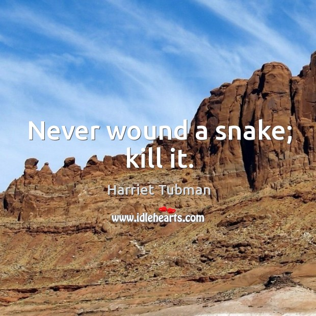 Never wound a snake; kill it. Image