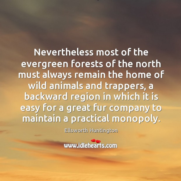 Nevertheless most of the evergreen forests of the north must always remain the home of wild animals and trappers Ellsworth Huntington Picture Quote
