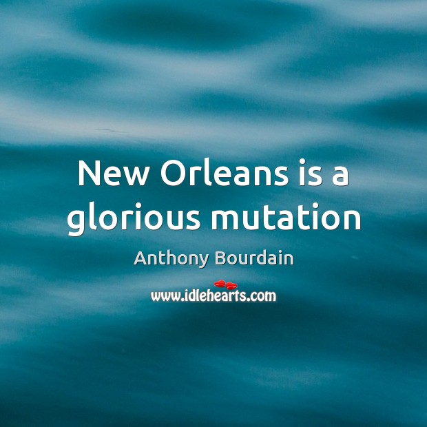 Image, New Orleans is a glorious mutation