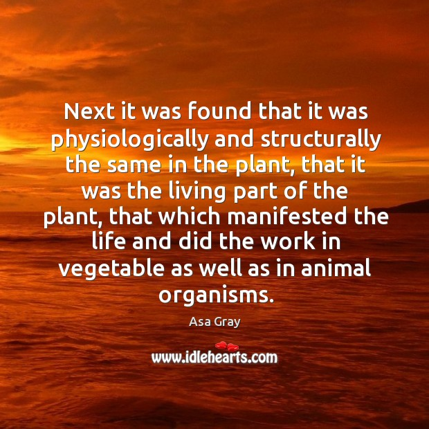 Image, Next it was found that it was physiologically and structurally the same in the plant